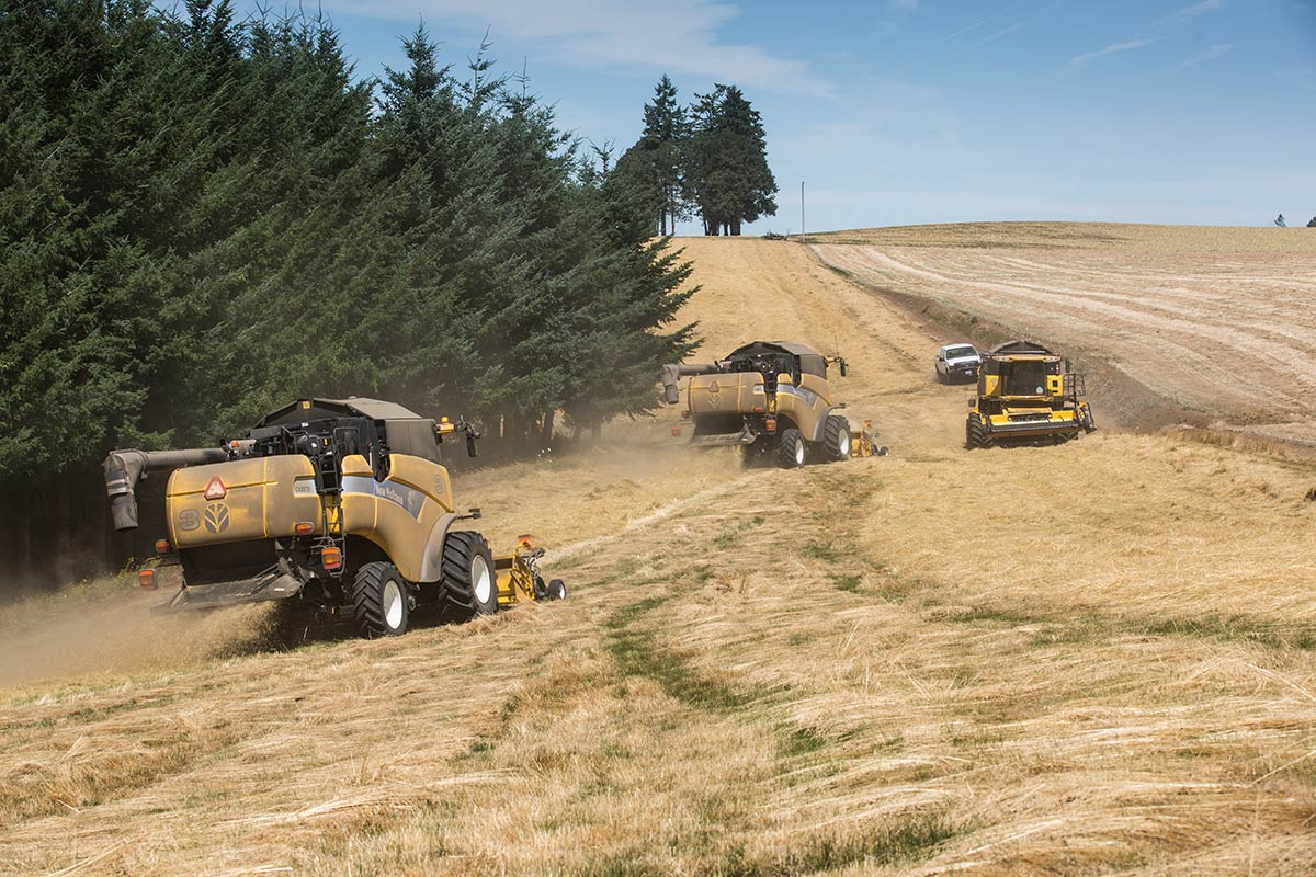 three farming tractors baling hay
