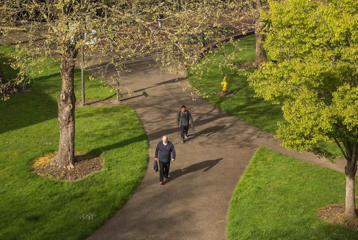 Two students walking through the quad on the Salem campus