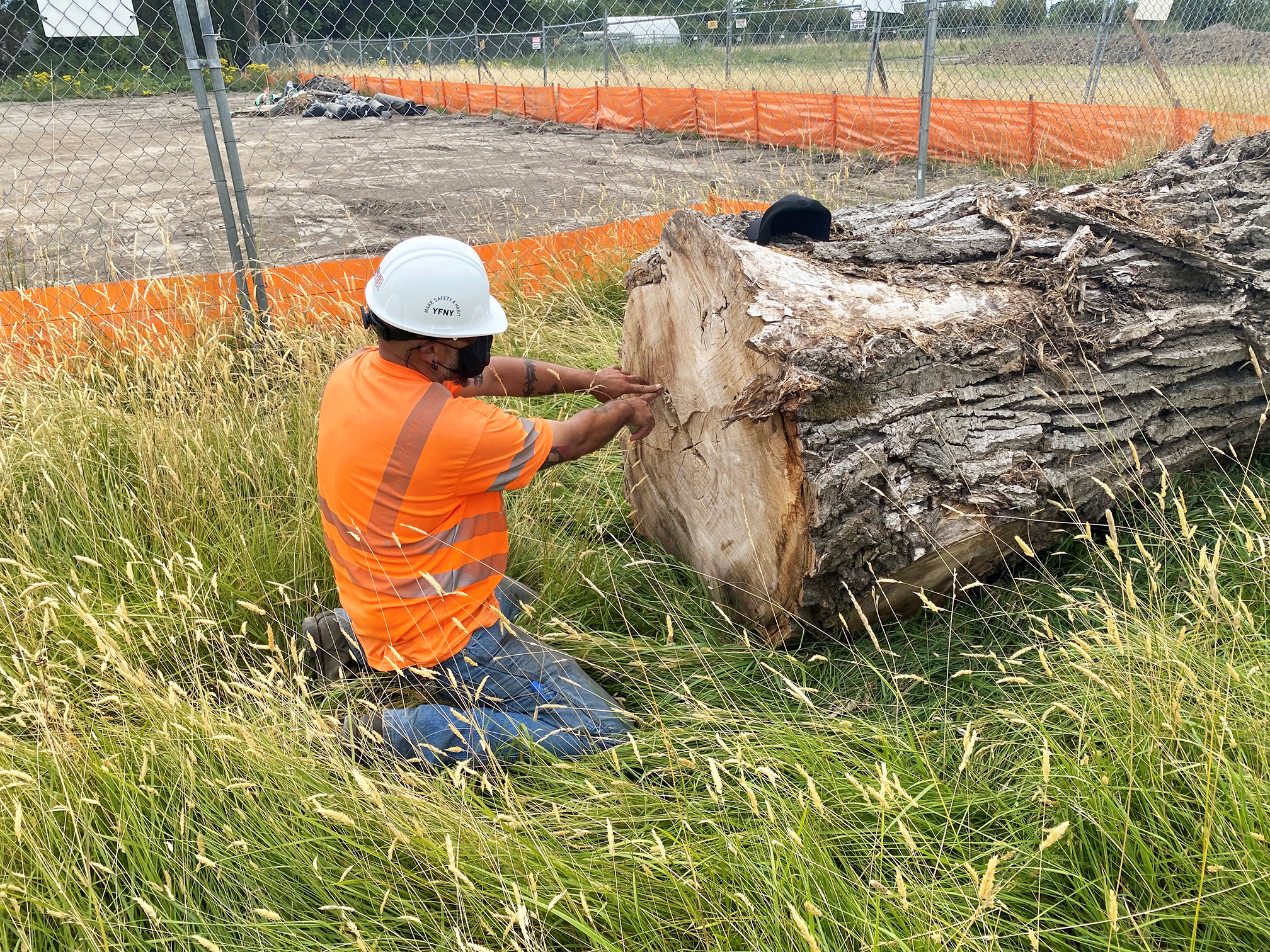 A worker making measure to turn cottonwood tree log into benches for the Ag Complex